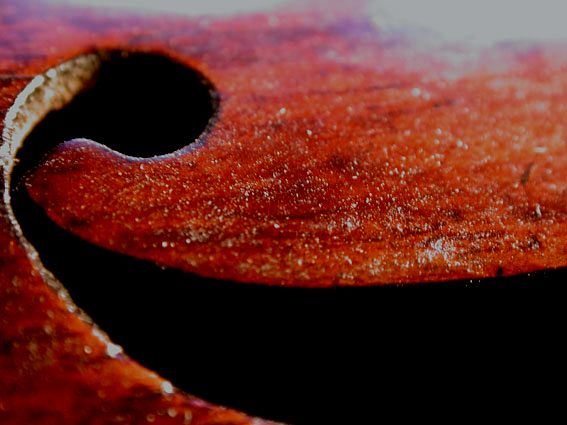 Mit Kolofoniumstaub verschmutzte Geige